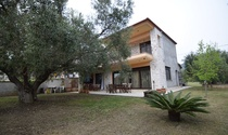Olive Tree House For Sale in Kassandra Halkidiki